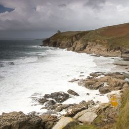 Rinsey Cove