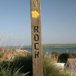 Rock This Way!
