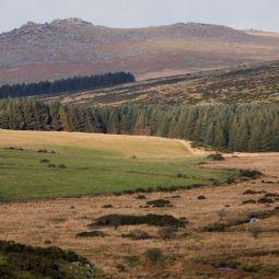 Roughtor Bodmin Moor