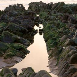 Sandymouth Rock Pool