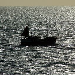 Trawler in Sparkley Sea