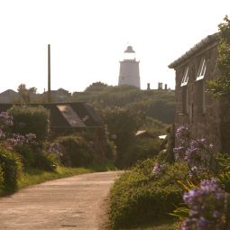 Evening light - Old Lane, St Agnes