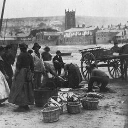 Gutting Fish - St Ives Harbour 1890