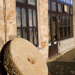 Pilchard Press - St Ives Museum