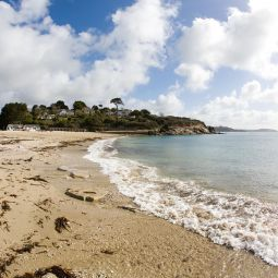 Swanpool Beach shoreline