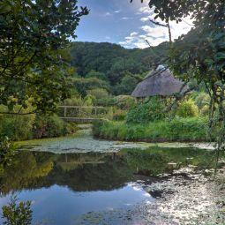 Tanglewood Wild Garden