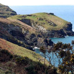 View to Barras Nose - Tinatagel