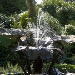 Trebah Fountain