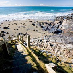 Steps down to Tregardock Beach