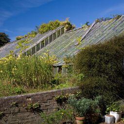 Trevarno Greenhouses
