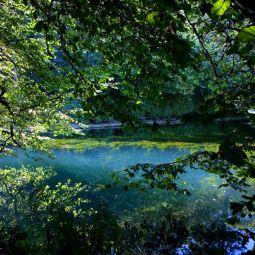 Lake View - Trevarno
