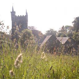 Churchyard - Summer's Evening