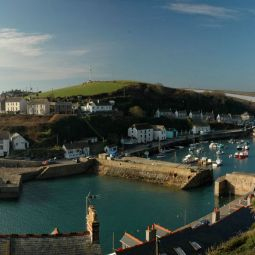 Porthleven dog friendly