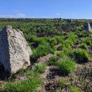 Porthmeor Stone Circle - Treen Common