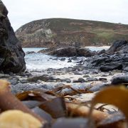 Boat Cove, Pendeen