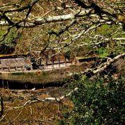 Derelict boat Frenchman's Creek