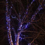 Xmas Lights - Truro City