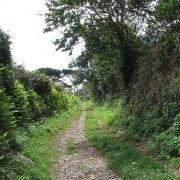 Lamorna footpath