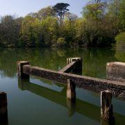 Boscathnoe Fishery - Heamoor