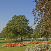 Boscawen Park - Truro