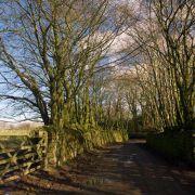 St Breward Lane