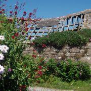 Broken Down Old Hut