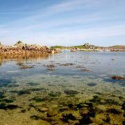 Covean shallows