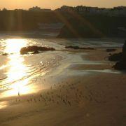 Early morning walker - Towan Beach