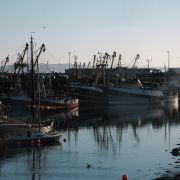 Newlyn Fleet - Early Morning