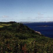 Lamorna bay in summer