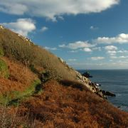 Lamorna Coast Path