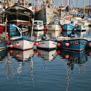 Newlyn Fishing Boats