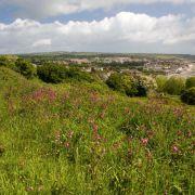 Meadow up Gurnick way