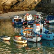Newquay Harbour Boats