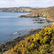 View from Pennance Point - Falmouth