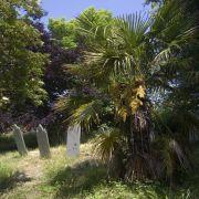 Philleigh Graveyard