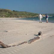Couple Walking on Beach at Rock