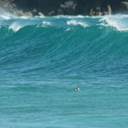 Seal and Wave at Porthcurno