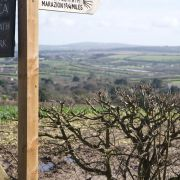 St Michael's Way - Ludgvan