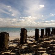 Wood Pier Stumps - St Ives