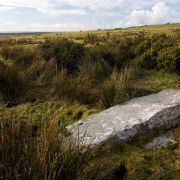Stripple Stones - Fallen Centre Stone