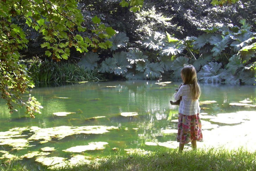 Bonython Manor gardens