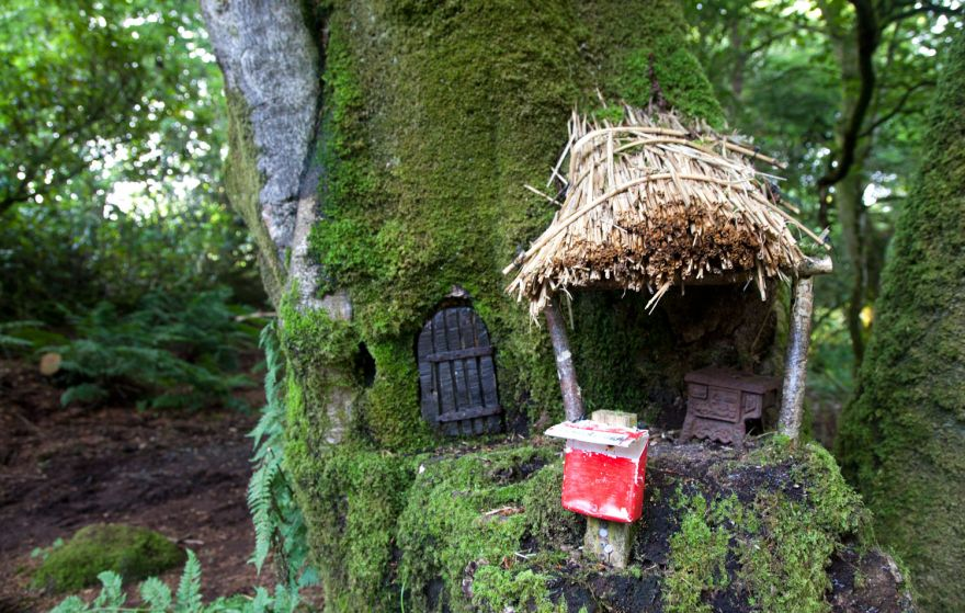 Tanglewood mouse house
