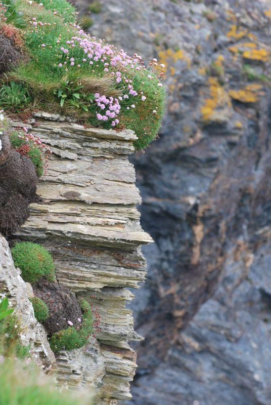 Cliffs at Godrevy