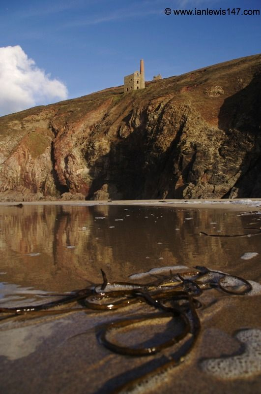 Wheal Coates from Chapel Porth