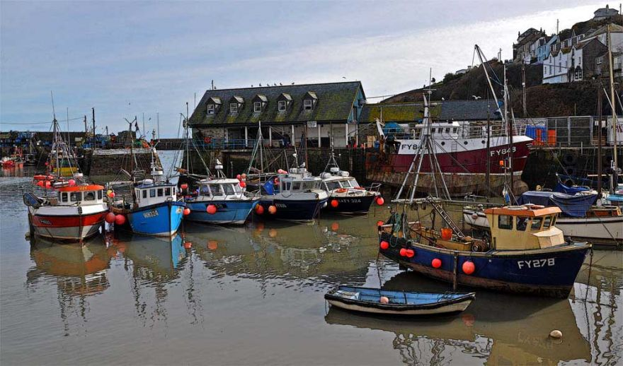 Mevagissey Harbour View