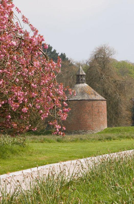 Dovecote - Antony House
