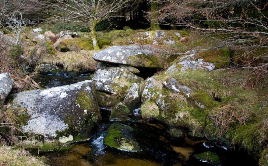 Bodmin Moor Stream
