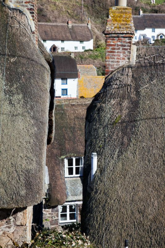Thatched Cottage Central - Cadgwith