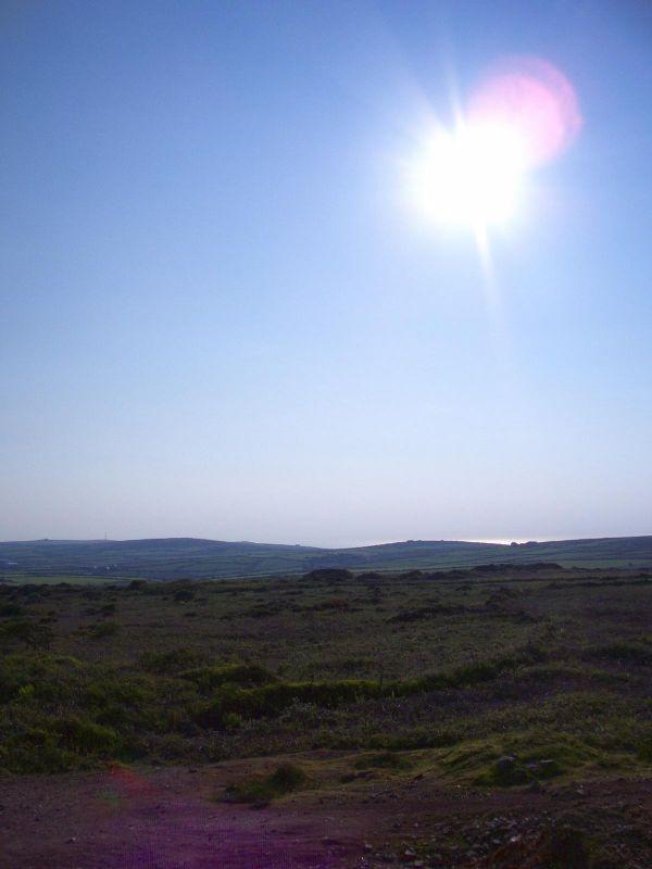 Evening sun on the moors